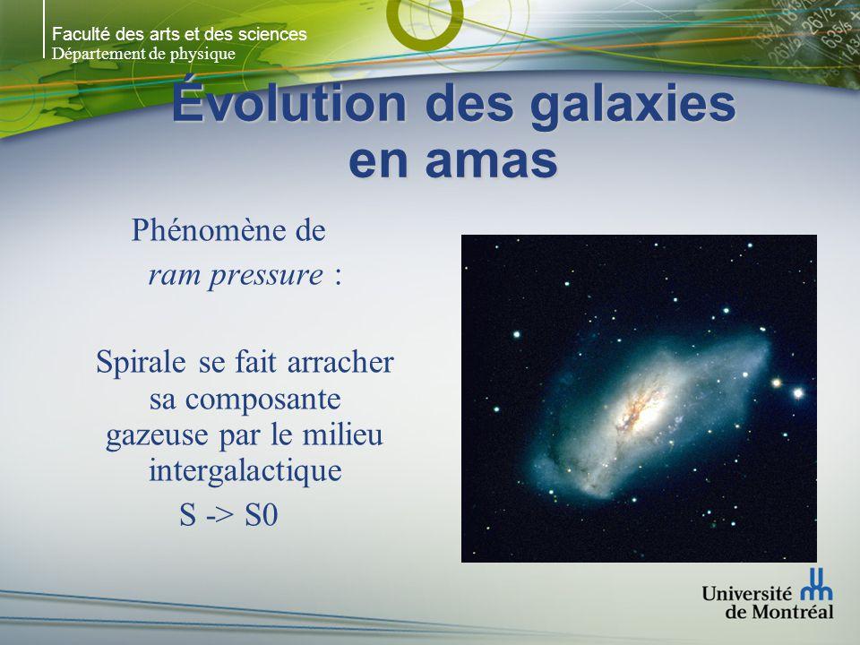 Faculté des arts et des sciences Département de physique Évolution des galaxies en amas Phénomène de ram pressure : Spirale se fait arracher sa composante gazeuse par le milieu intergalactique S -> S0