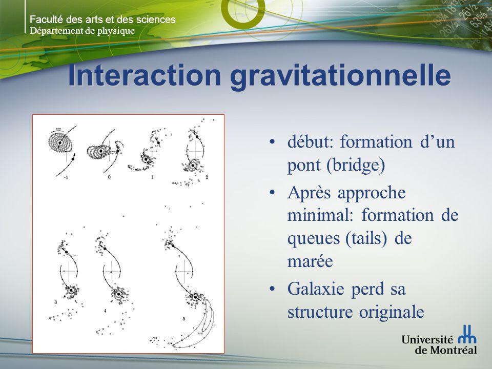 Faculté des arts et des sciences Département de physique Interaction gravitationnelle début: formation dun pont (bridge) Après approche minimal: formation de queues (tails) de marée Galaxie perd sa structure originale