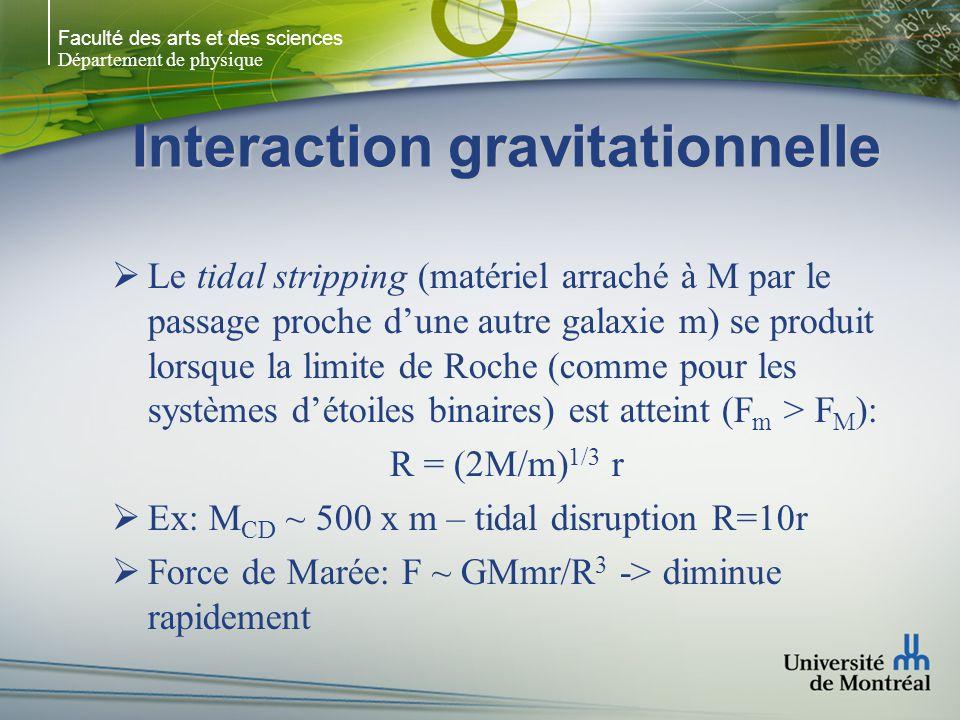 Faculté des arts et des sciences Département de physique Interaction gravitationnelle Le tidal stripping (matériel arraché à M par le passage proche dune autre galaxie m) se produit lorsque la limite de Roche (comme pour les systèmes détoiles binaires) est atteint (F m > F M ): R = (2M/m) 1/3 r Ex: M CD ~ 500 x m – tidal disruption R=10r Force de Marée: F ~ GMmr/R 3 -> diminue rapidement