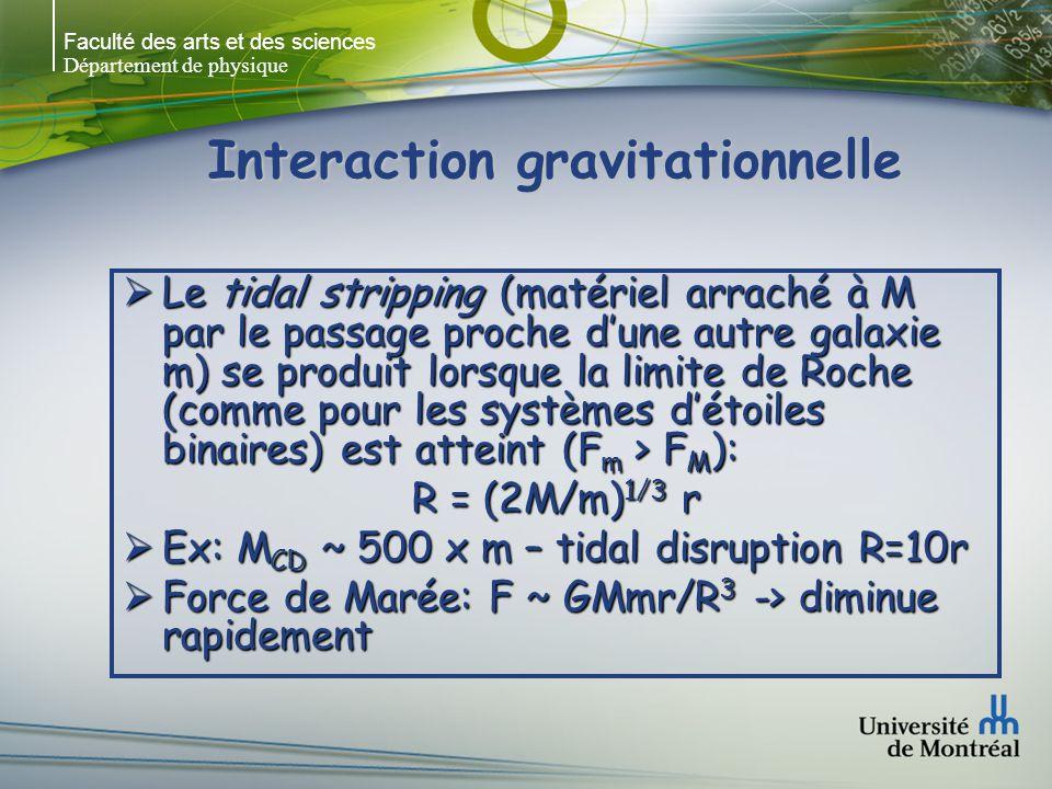 Faculté des arts et des sciences Département de physique Interaction gravitationnelle Le tidal stripping (matériel arraché à M par le passage proche d