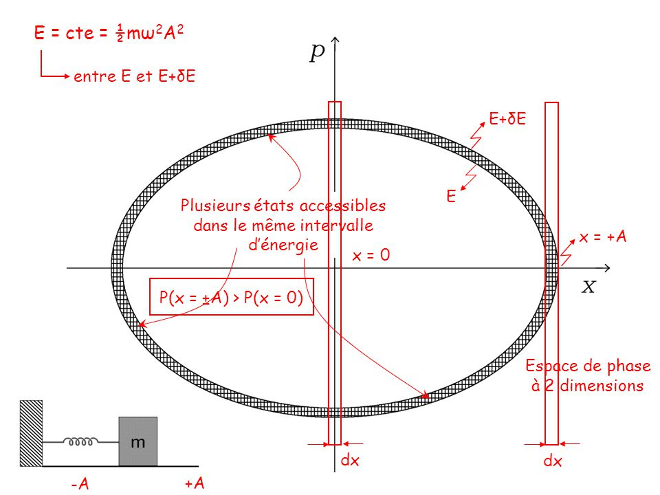 E = cte = ½mω 2 A 2 entre E et E+δE Espace de phase à 2 dimensions E E+δE Plusieurs états accessibles dans le même intervalle dénergie dx x = +A x = 0 P(x = ±A) > P(x = 0) -A +A