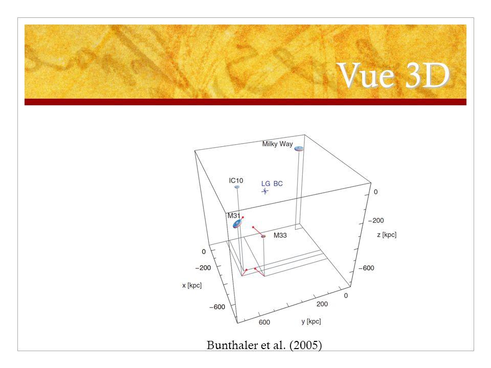 Vue 3D Bunthaler et al. (2005)