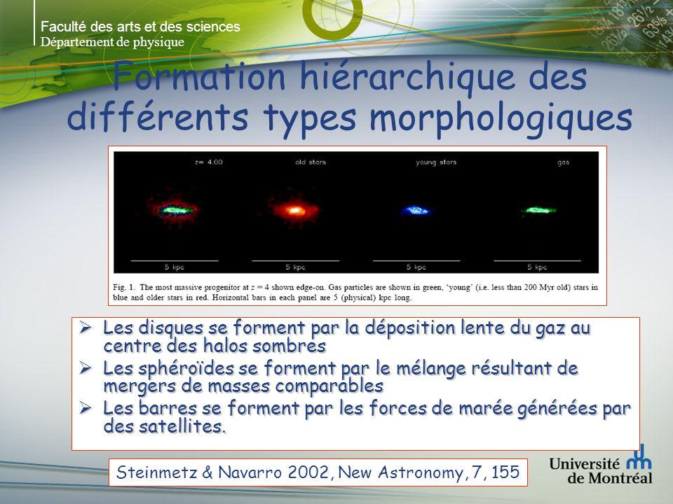 Faculté des arts et des sciences Département de physique Formation hiérarchique des différents types morphologiques Les disques se forment par la dépo