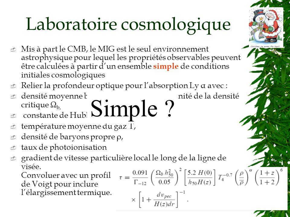 Laboratoire cosmologique Mis à part le CMB, le MIG est le seul environnement astrophysique pour lequel les propriétés observables peuvent être calculées à partir dun ensemble simple de conditions initiales cosmologiques Relier la profondeur optique pour labsorption Ly α avec : densité moyenne baryonique (gazeuse) en unité de la densité critique Ω b, constante de Hubble à un redshift z, H(z), température moyenne du gaz T, densité de baryons propre ρ, taux de photoionisation gradient de vitesse particulière local le long de la ligne de visée.