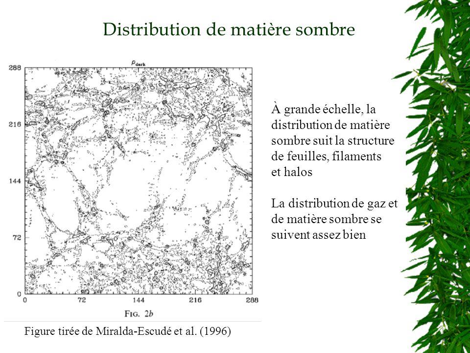 Distribution de mati è re sombre Figure tirée de Miralda-Escudé et al.