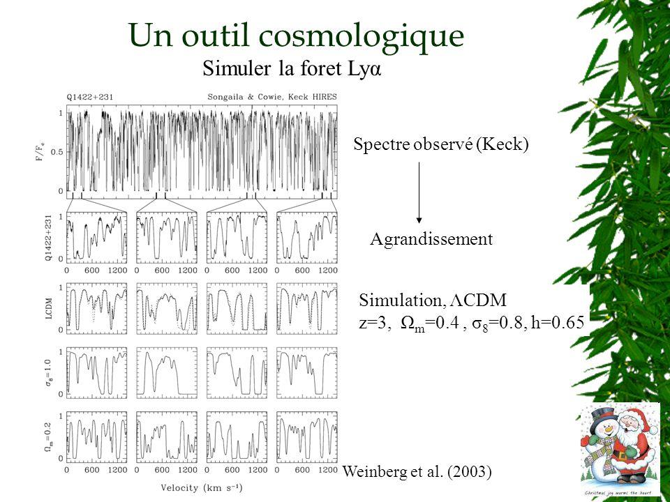 Un outil cosmologique Simuler la foret Lyα Weinberg et al.