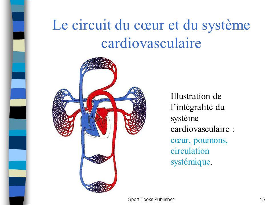 Sport Books Publisher15 Le circuit du cœur et du système cardiovasculaire Illustration de lintégralité du système cardiovasculaire : cœur, poumons, ci