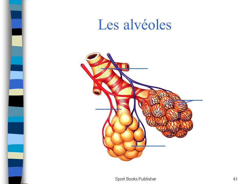 Sport Books Publisher41 Les alvéoles