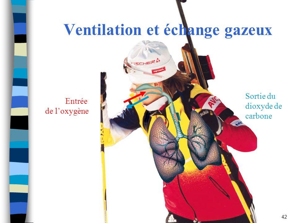 Sport Books Publisher42 Ventilation et échange gazeux Entrée de loxygène Sortie du dioxyde de carbone