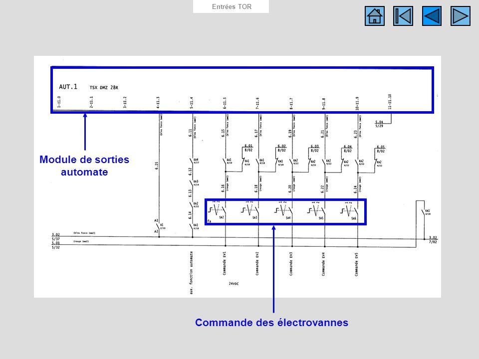 Schéma des entrées API Entrées TOR Module de sorties automate Commande des électrovannes