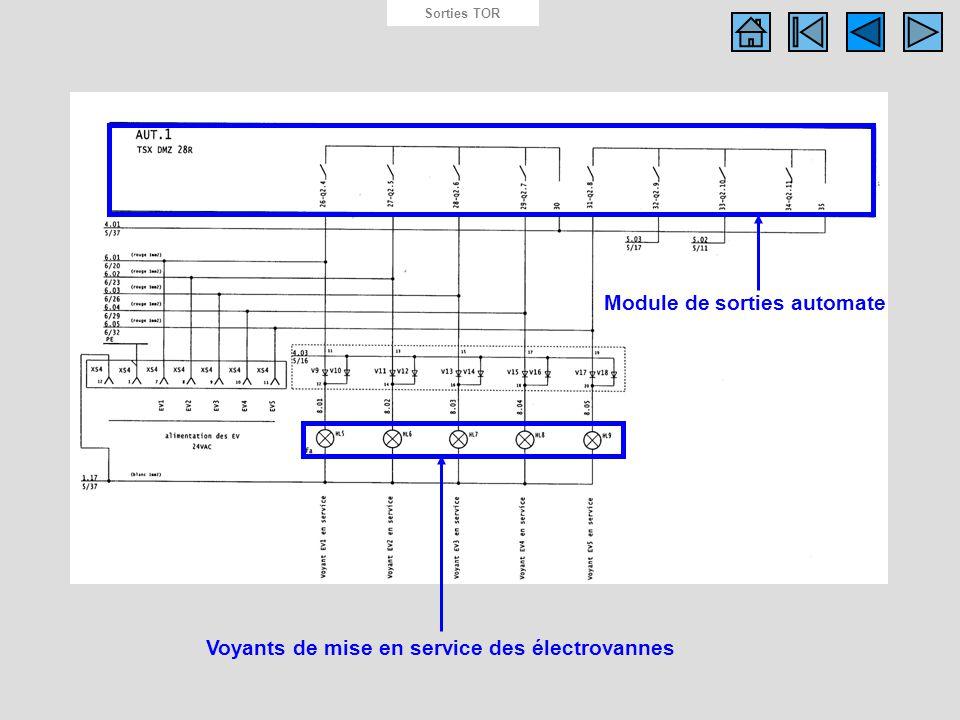 Schéma des sorties API Sorties TOR Voyants de mise en service des électrovannes Module de sorties automate