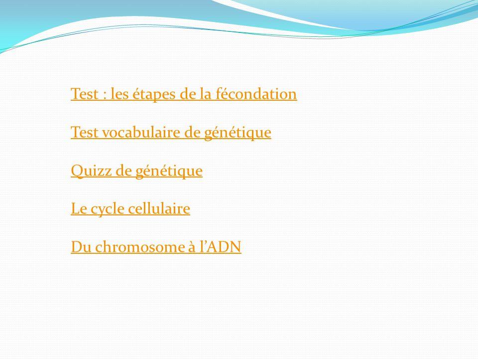 Test : les étapes de la fécondation Test vocabulaire de génétique Quizz de génétique Le cycle cellulaire Du chromosome à lADN