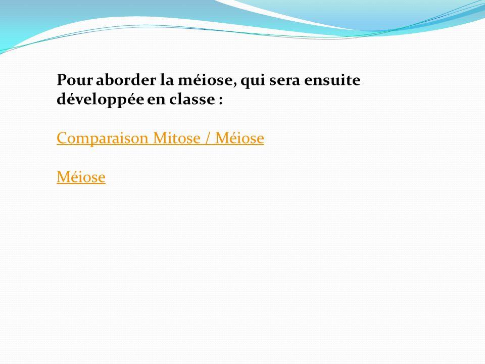 Pour aborder la méiose, qui sera ensuite développée en classe : Comparaison Mitose / Méiose Méiose