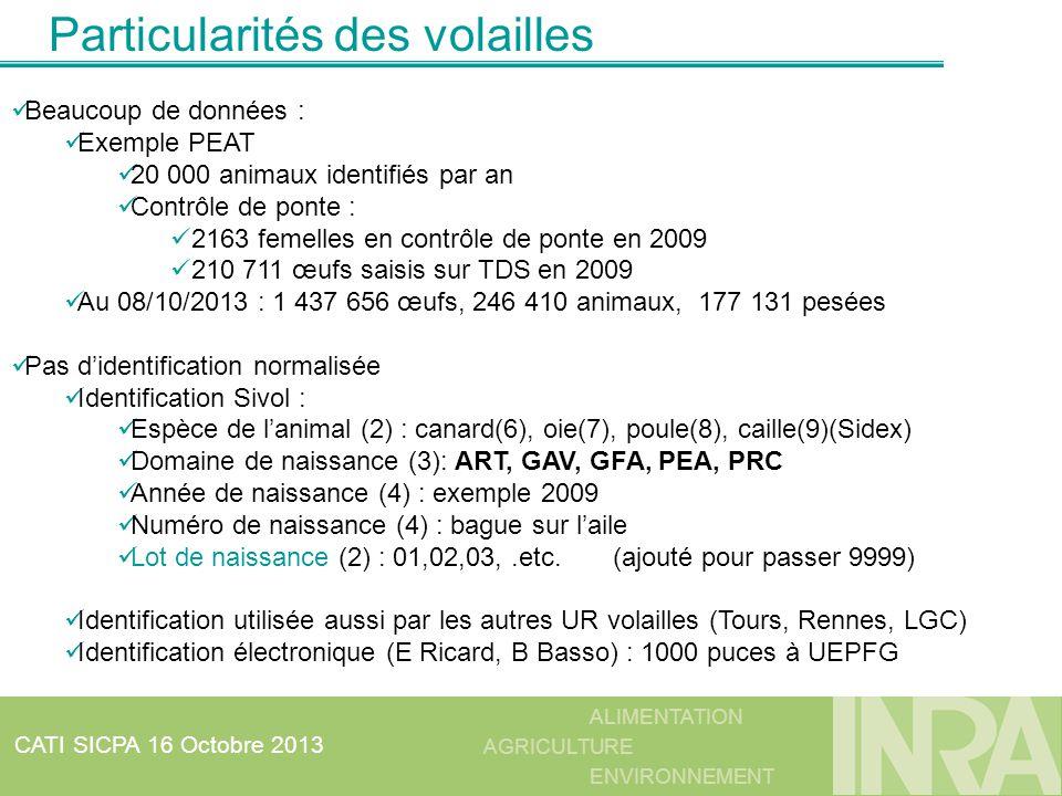 ALIMENTATION AGRICULTURE ENVIRONNEMENT CATI SICPA 16 Octobre 2013 Particularités des volailles Beaucoup de données : Exemple PEAT 20 000 animaux ident