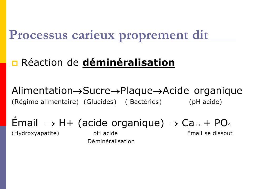 Processus carieux proprement dit Réaction de déminéralisation AlimentationSucrePlaqueAcide organique (Régime alimentaire) (Glucides) ( Bactéries) (pH acide) Émail H+ (acide organique) Ca ++ + PO 4 (Hydroxyapatite) pH acide Émail se dissout Déminéralisation