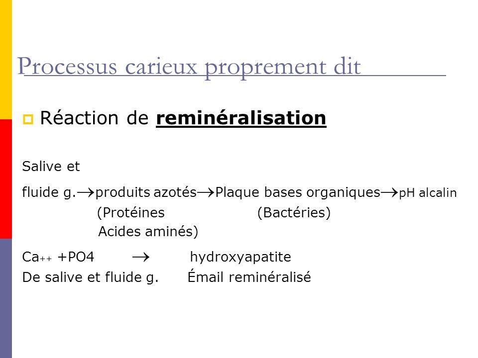 Processus carieux proprement dit Réaction de reminéralisation Salive et fluide g.