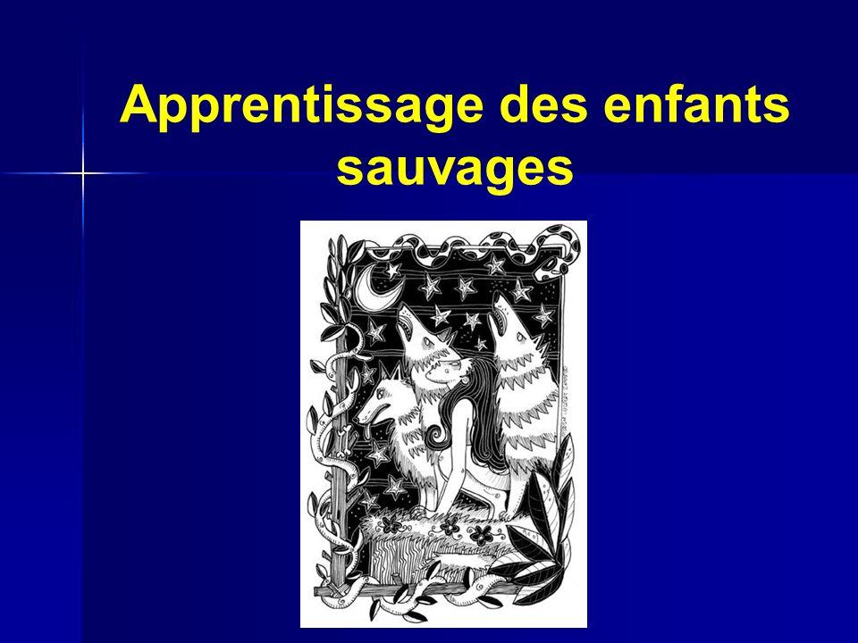 Kaspar: Apprentissage Dans le cas de Kaspar, il na rien de sauvage.