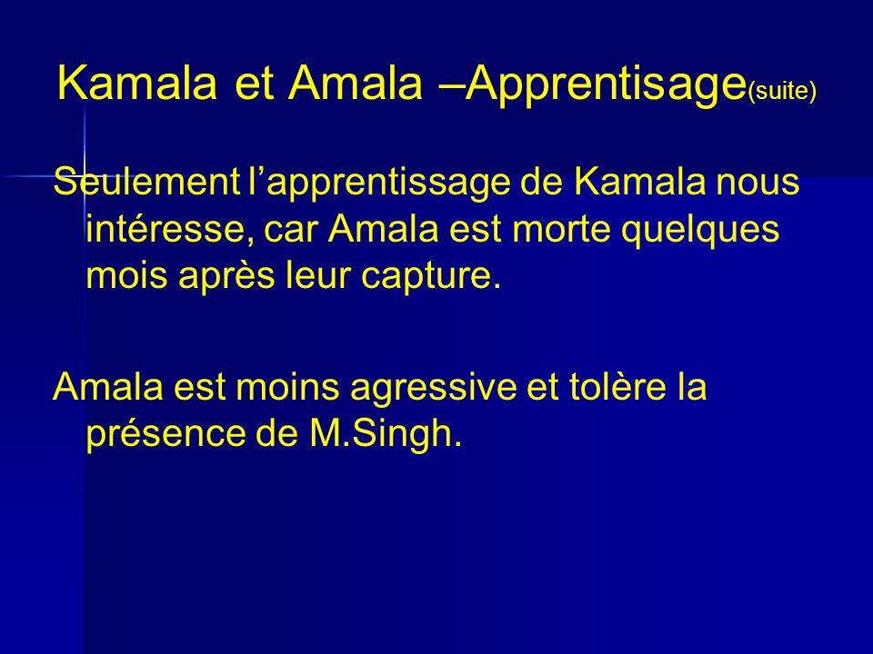 Kamala et Amala –Apprentisage (suite) Seulement lapprentissage de Kamala nous intéresse, car Amala est morte quelques mois après leur capture.