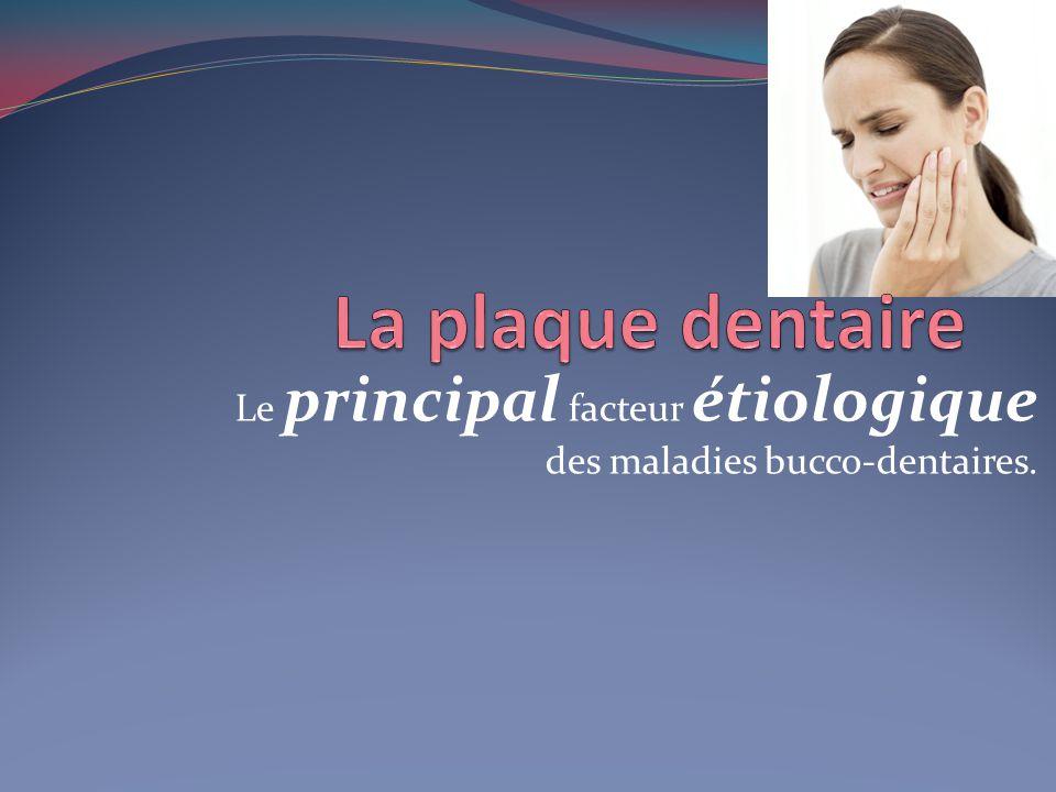 La plaque dentaire La plaque dentaire se forme avec ou sans sources alimentaires La plaque nest pas un résidu daliments