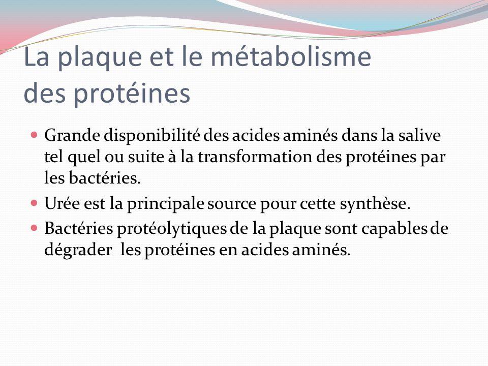 La plaque et le métabolisme des lipides. Lipides: constituants des membranes bactériennes La synthèse des lipides à partir des acides gras salivaires