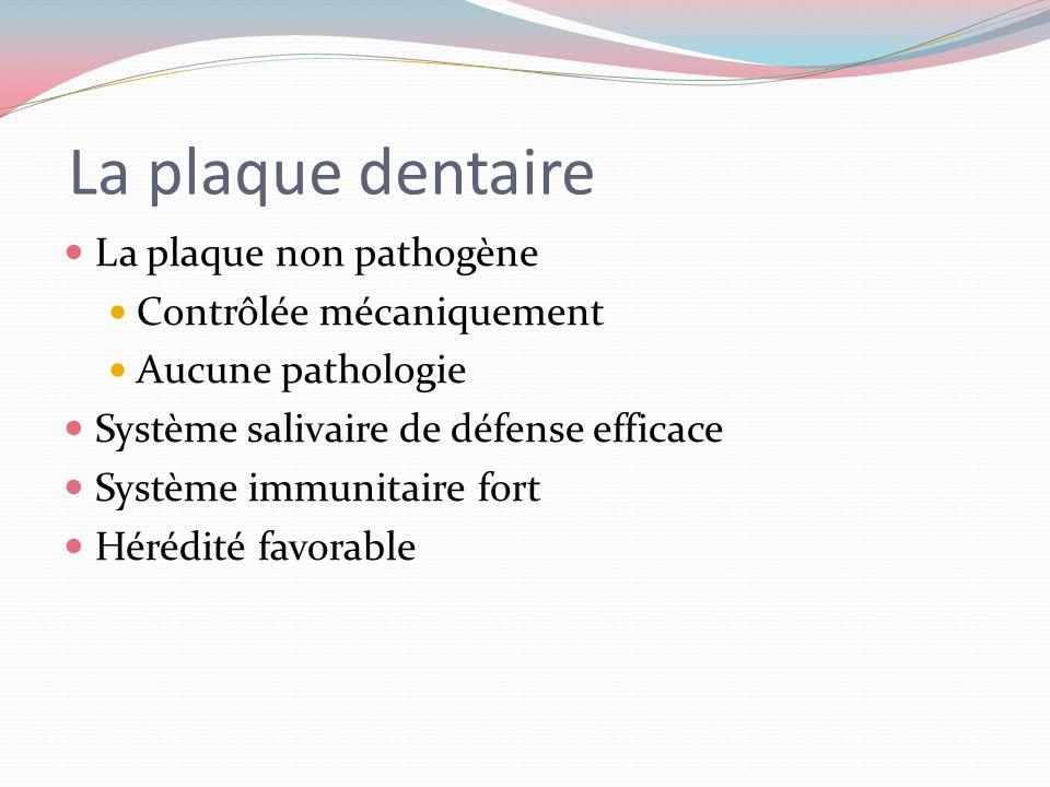 La plaque dentaire Trois types de plaque selon le contenu bactérien Plaque non pathogène Plaque cariogénique Plaque parodontopathique