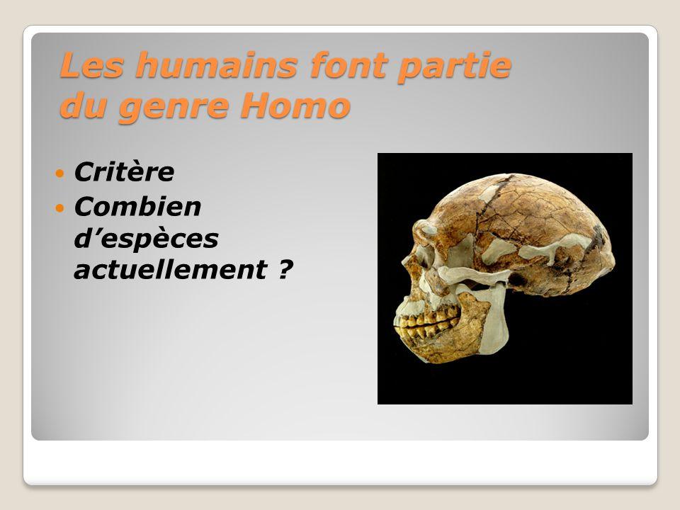 Les humains font partie du genre Homo Critère Combien despèces actuellement ?
