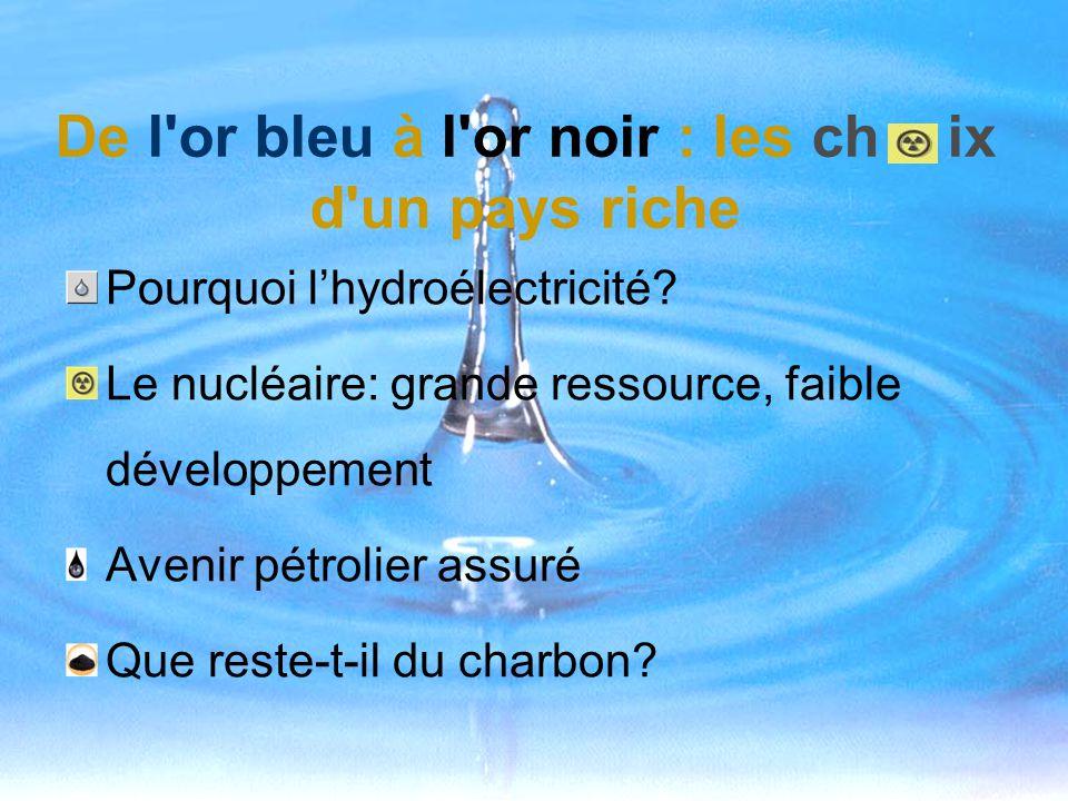De l'or bleu à l'or noir : les ch ix d'un pays riche Pourquoi lhydroélectricité? Le nucléaire: grande ressource, faible développement Avenir pétrolier