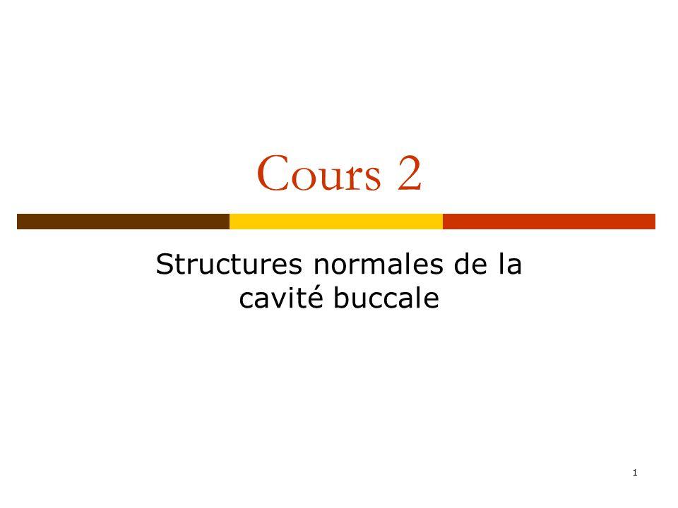 1 Cours 2 Structures normales de la cavité buccale