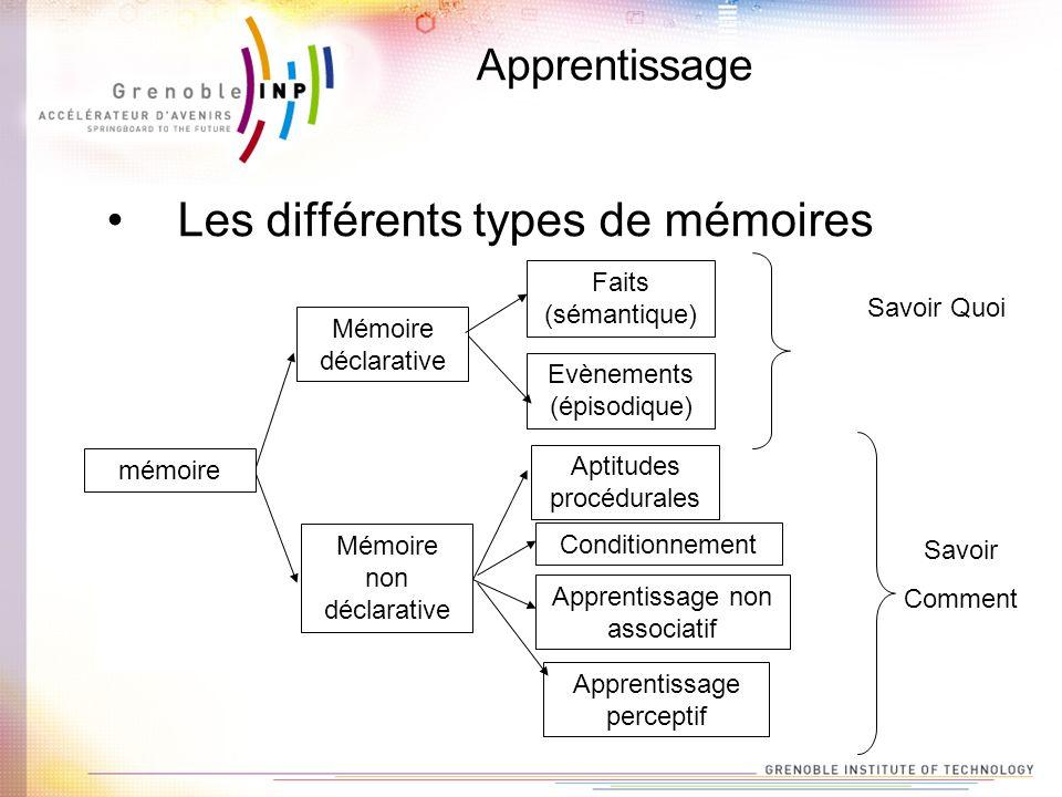 Apprentissage Les différents types de mémoires mémoire Mémoire déclarative Mémoire non déclarative Faits (sémantique) Evènements (épisodique) Aptitude
