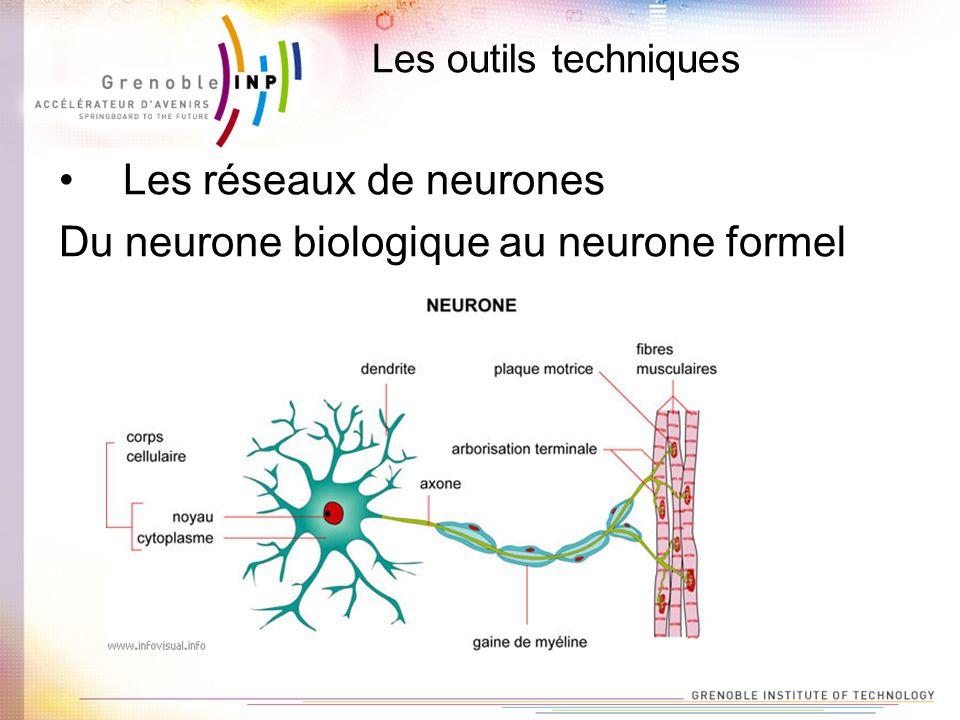 Les outils techniques Les réseaux de neurones Du neurone biologique au neurone formel
