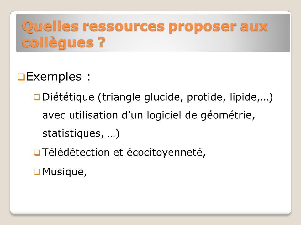 Quelles ressources proposer aux collègues .
