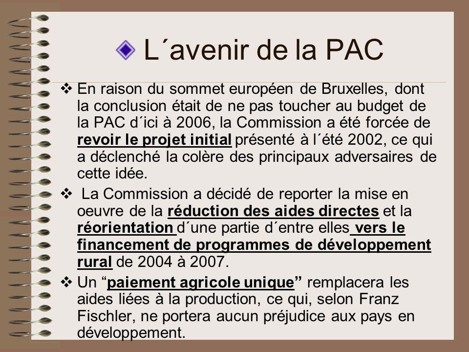 L´avenir de la PAC En raison du sommet européen de Bruxelles, dont la conclusion était de ne pas toucher au budget de la PAC d´ici à 2006, la Commission a été forcée de revoir le projet initial présenté à l´été 2002, ce qui a déclenché la colère des principaux adversaires de cette idée.