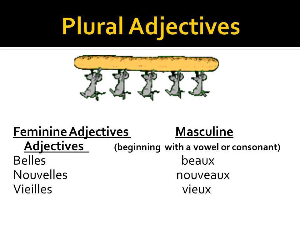 Feminine Adjectives Masculine Adjectives (beginning with a vowel or consonant) Belles beaux Nouvelles nouveaux Vieilles vieux