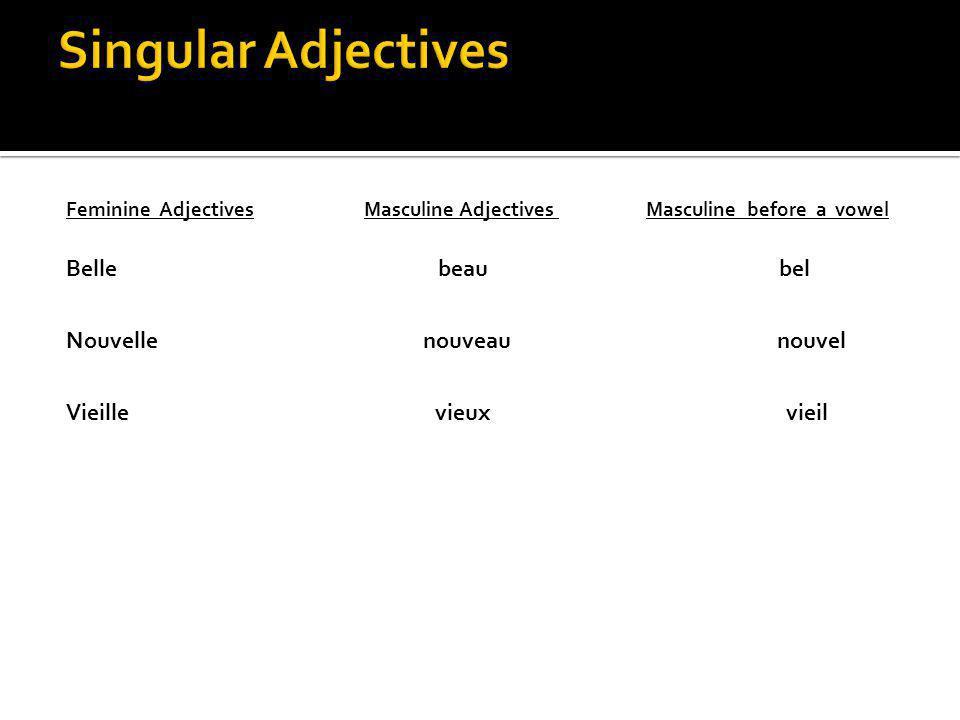 Feminine Adjectives Masculine Adjectives Masculine before a vowel Belle beau bel Nouvelle nouveau nouvel Vieille vieux vieil