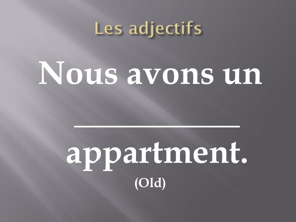Nous avons un __________ appartment. (Old)