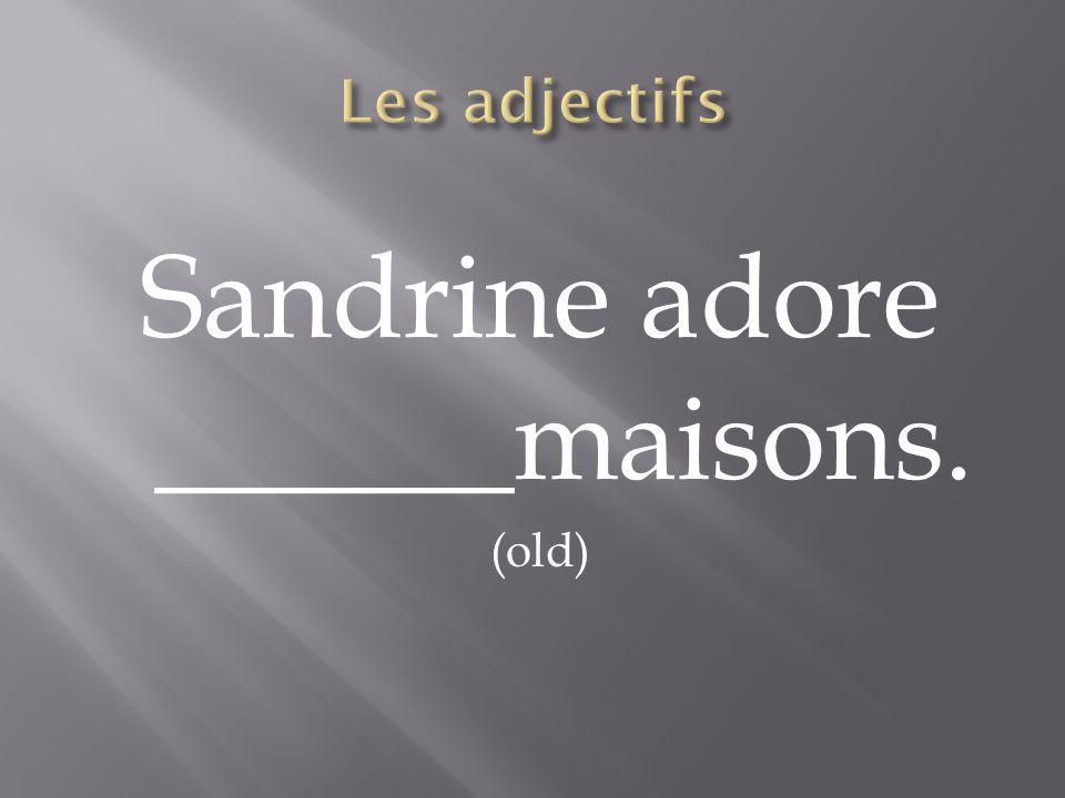 Sandrine adore ______maisons. (old)