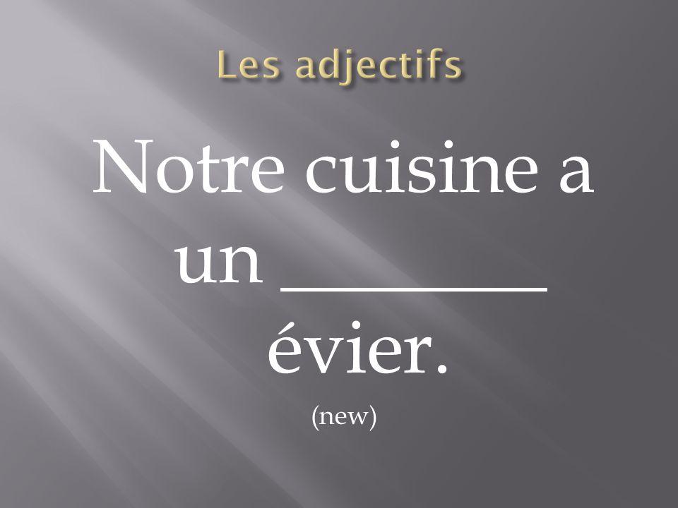 Notre cuisine a un _______ évier. (new)