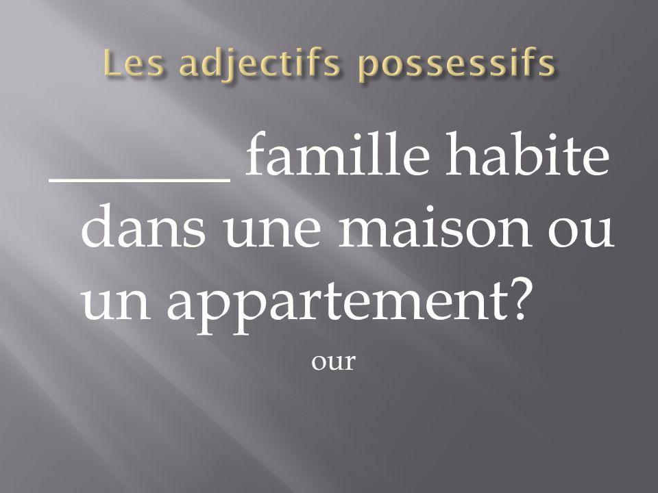 ______ famille habite dans une maison ou un appartement? our
