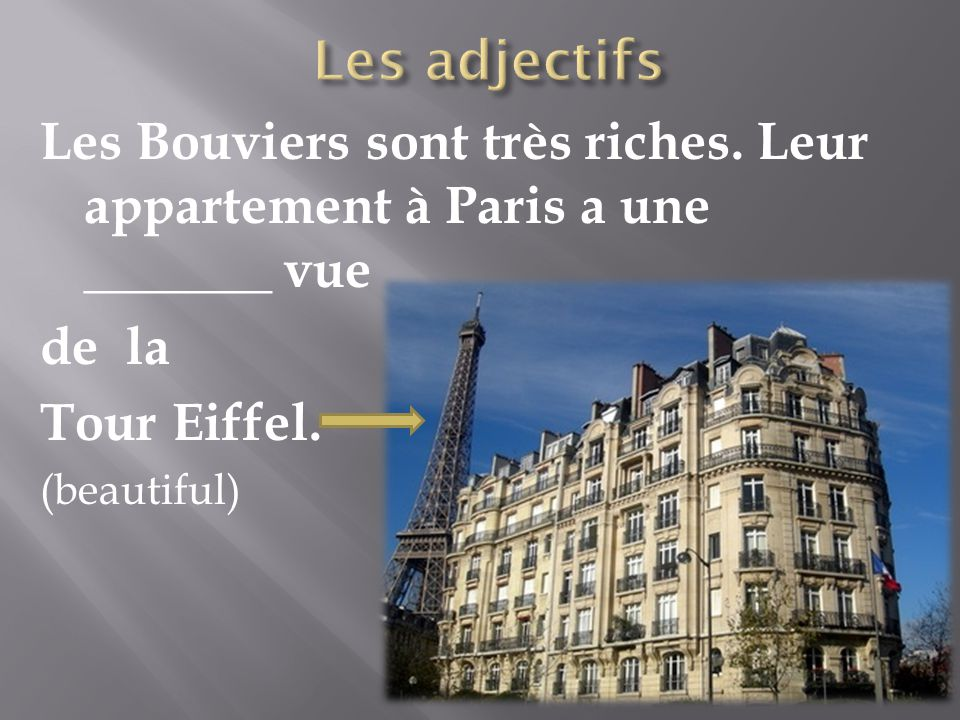 Les Bouviers sont très riches. Leur appartement à Paris a une _______ vue de la Tour Eiffel. (beautiful)