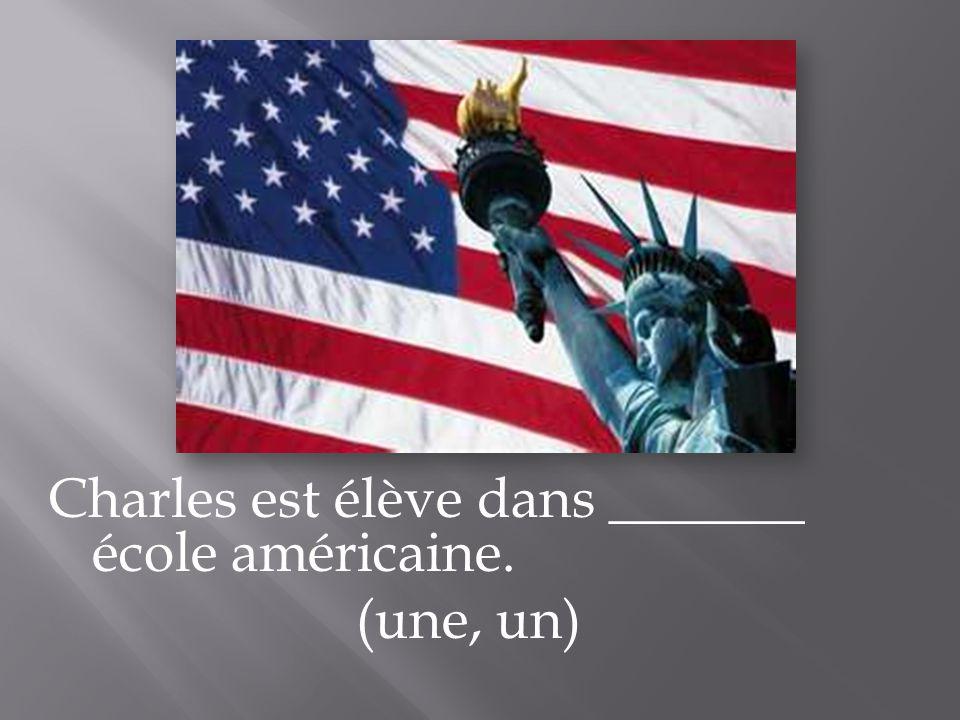 Charles est élève dans _______ école américaine. (une, un)
