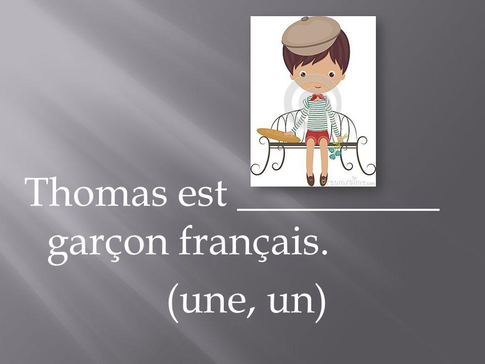 Thomas est __________ garçon français. (une, un)