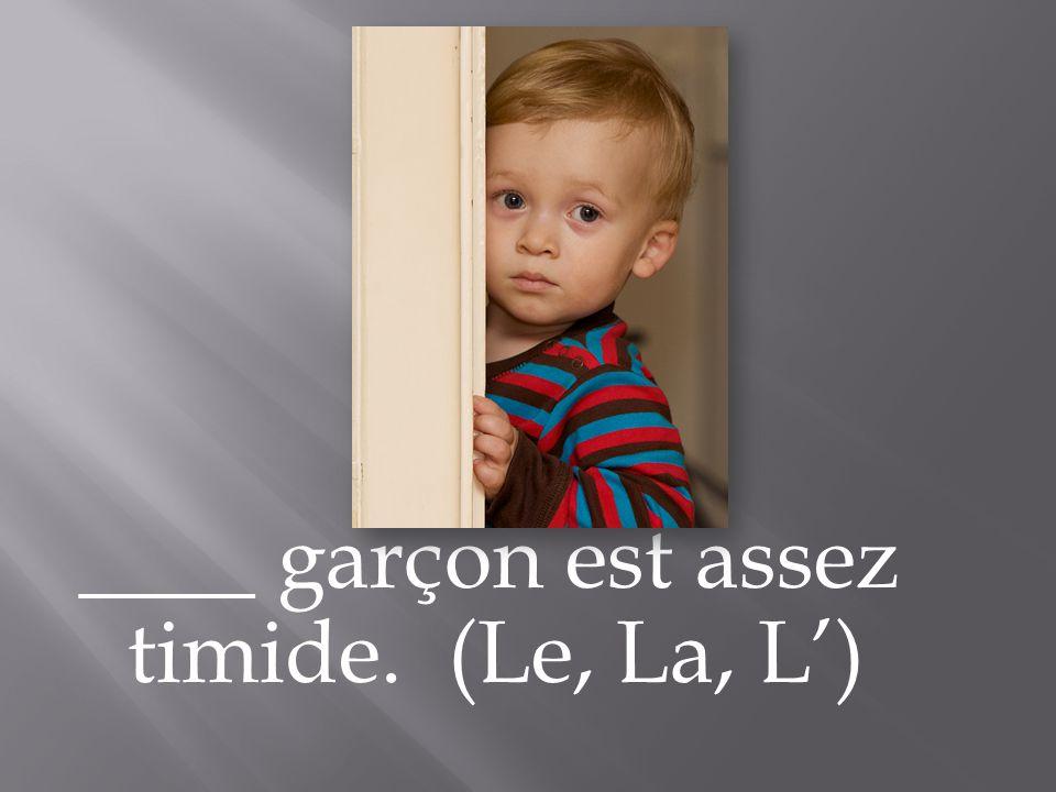 ____ garçon est assez timide. (Le, La, L)