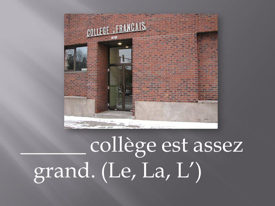 ______ collège est assez grand. (Le, La, L)