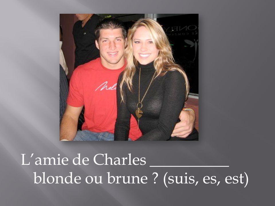 Lamie de Charles __________ blonde ou brune ? (suis, es, est)