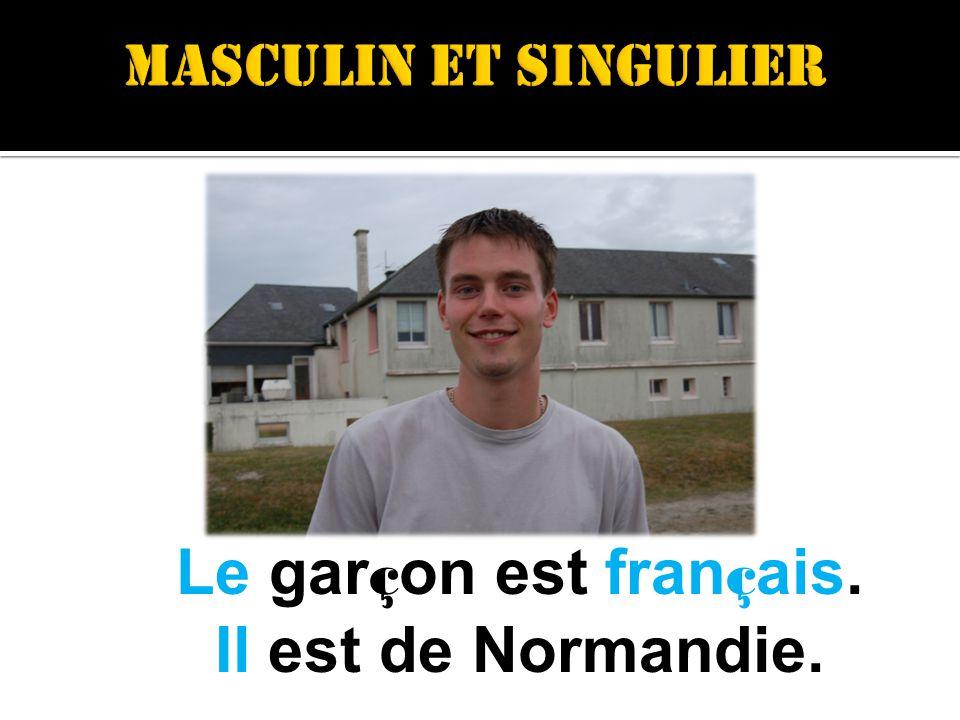 Le gar ç on est fran ç ais. Il est de Normandie.