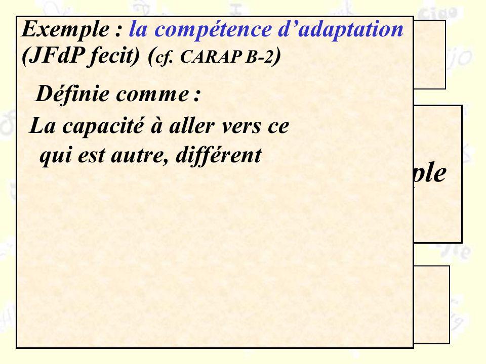 Compétences / ressources Quelle organisation pour le CARAP ? Pourquoi ?Un exemple Exemple : la compétence dadaptation (JFdP fecit) ( cf. CARAP B-2 ) D