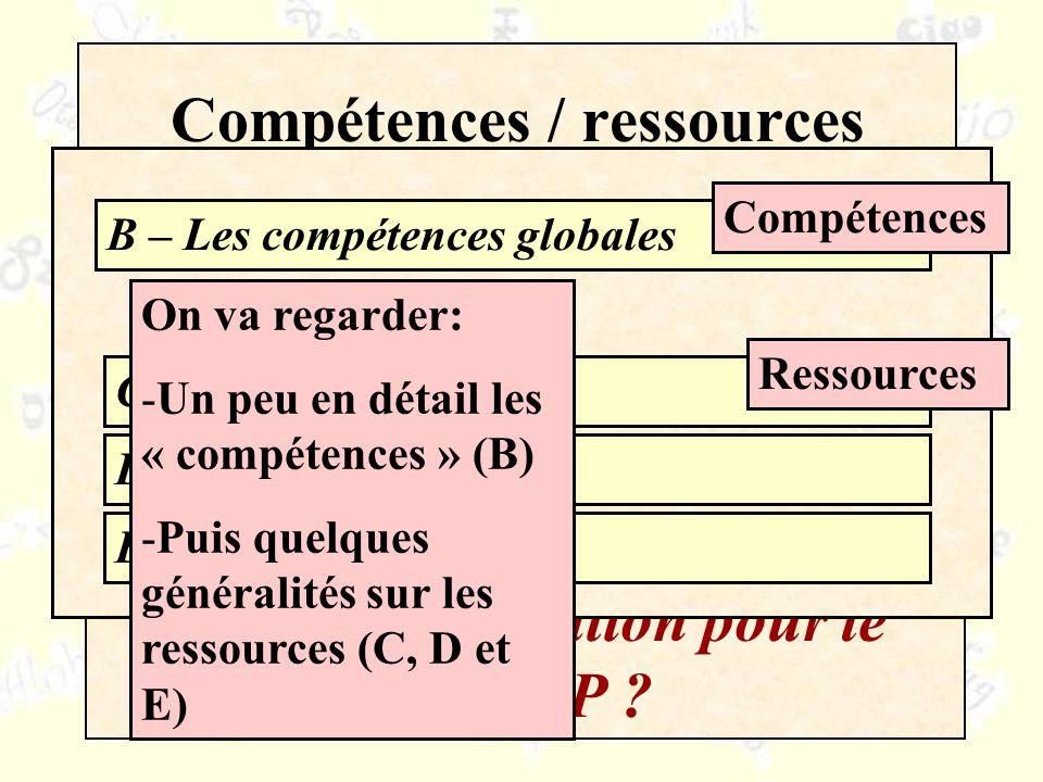 Compétences / ressources Quelle organisation pour le CARAP ? Pourquoi ?Un exemple B – Les compétences globales C – Les savoirs D – Les savoir-être E –