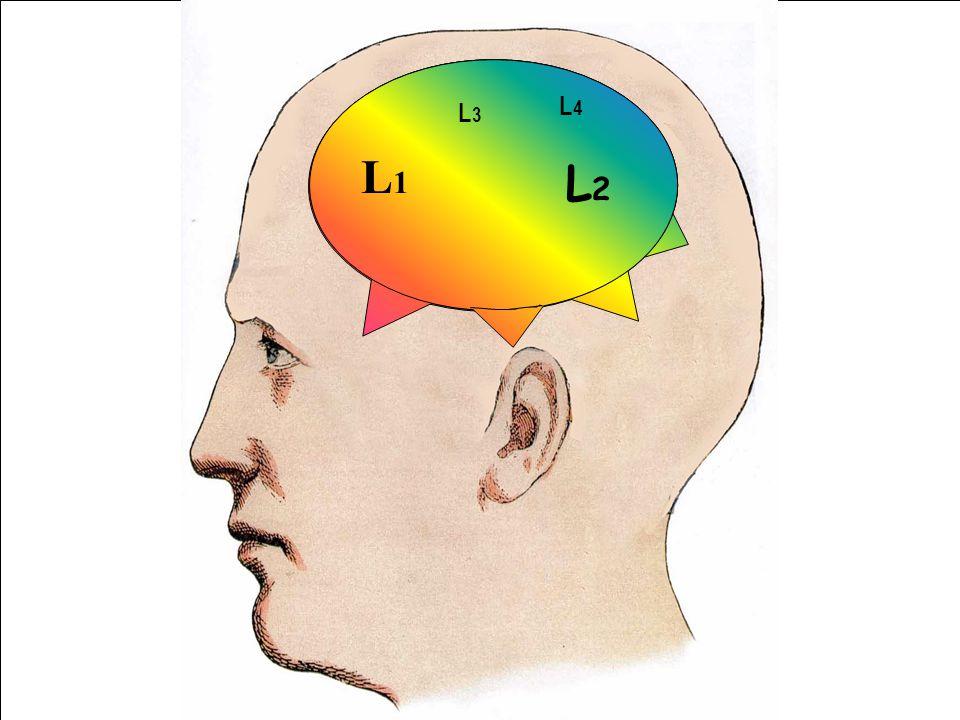 L1L1 L2L2 L1L1 L3L3 L4L4