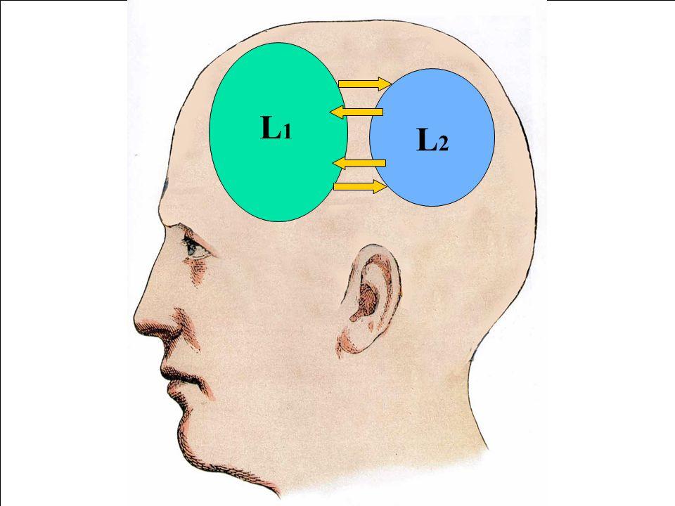 L1L1 L1L1 L1L1 L1L1 L1L1 L2L2 L2L2 L2L2 L2L2