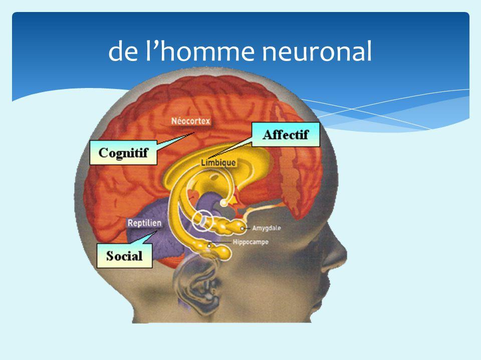 de lhomme neuronal